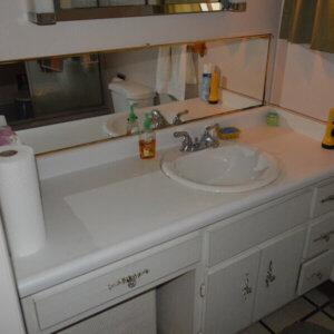 Main Level Bath 2
